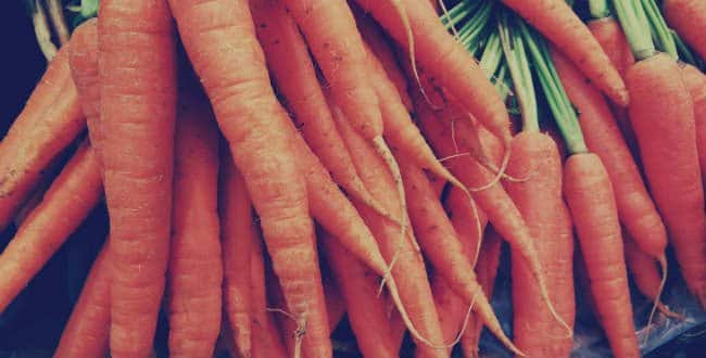carbs in carrots, carrots on keto, carrots on a keto diet