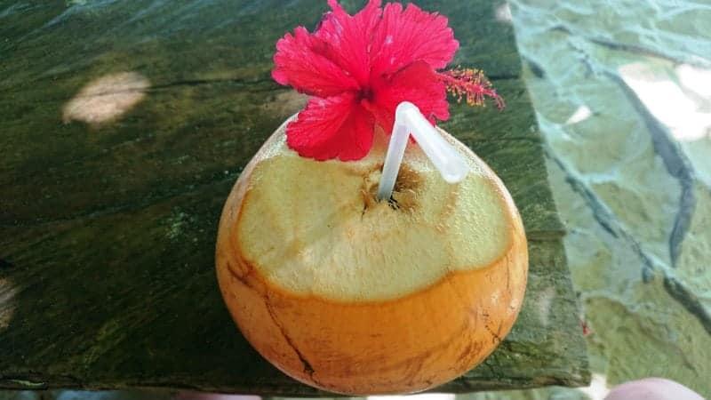 keto on vacation, coconut